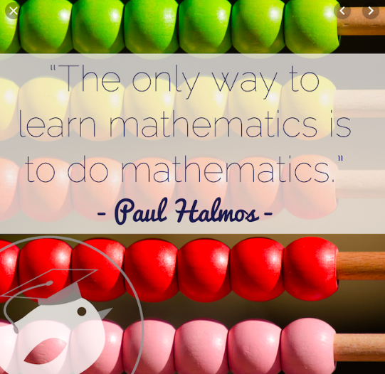 The Only Way to Learn Mathematics is to do Mathematics
