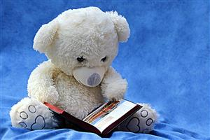Stuffed Bear With Book