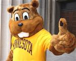 U of M Golden Gophers