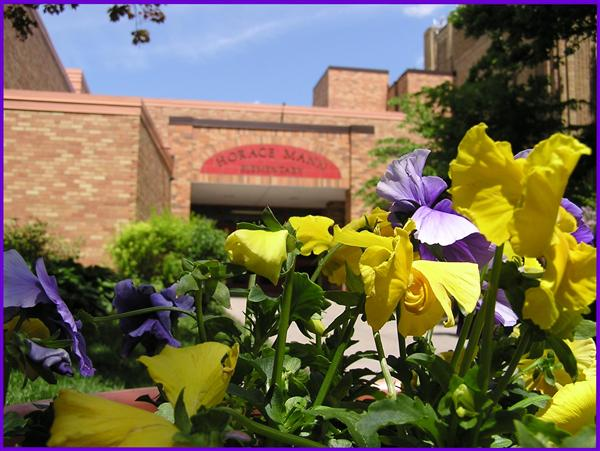 flowers in front of school
