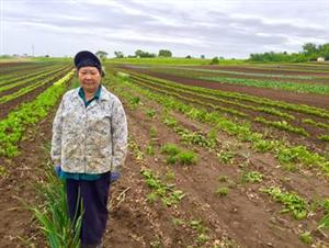 Farmer Name: Judy Yang (farms with her husband Blia Yao Yang)