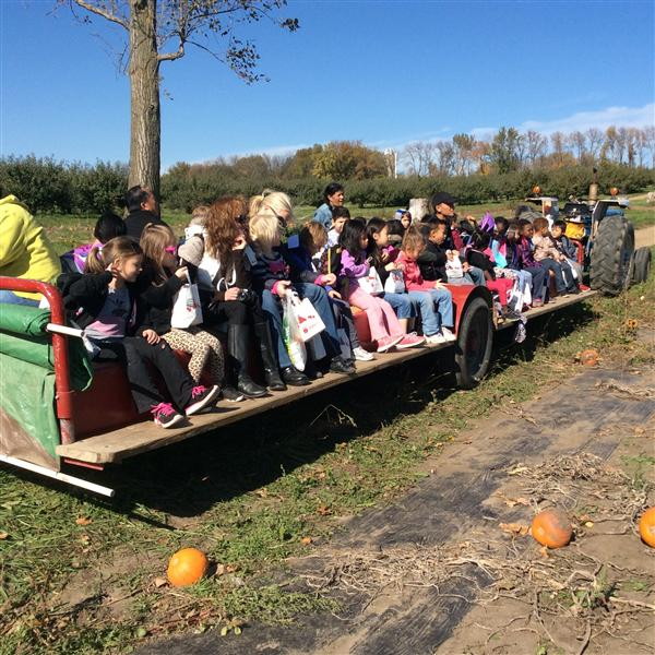 Afton Apple Field Trip
