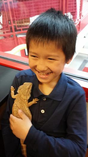 Student and lizard